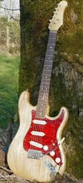 Electric guitar Stratocaster SDTB Dupont
