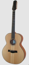 Folk guitar Dupont - ABJ100-12strings Model