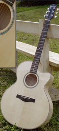 Folk guitar Dupont - ABJ50E Model