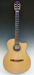 Folk guitar Dupont - Concert guitar Nylon string CFN100