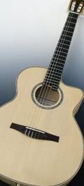 Folk guitar Dupont - Concert guitar Nylon string CFN20