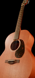 Folk guitar Dupont - Concert Model CFN90