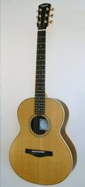 Folk guitar Dupont - FingerStyle-FS30 guitar model