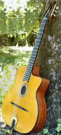 Gypsy swing -Selmer guitar-MD100 Model