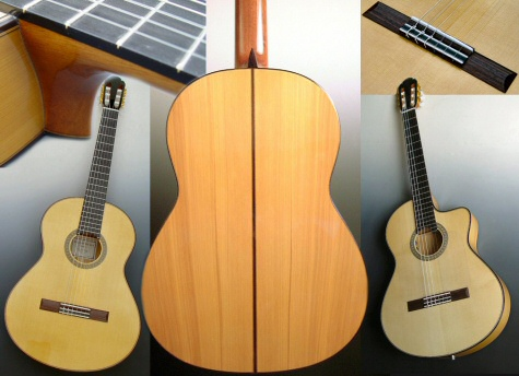 Guitares Flamenco Dupont