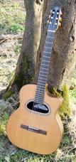 Guitare Dupont - Type Maccafferi Classique